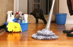 تنظيف موكيت بجدة